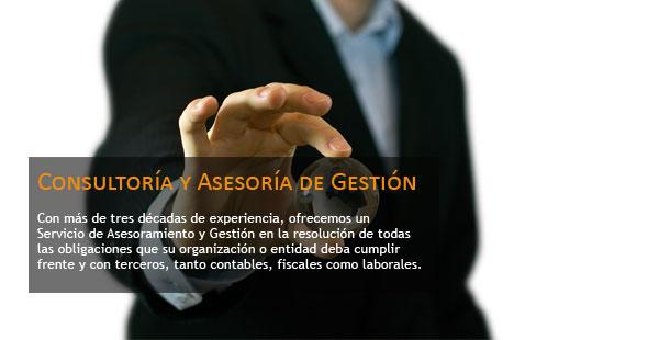 Consultoría y Asesoría de Gestión